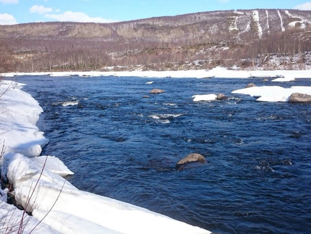 Kola river opens for season 2018!!!