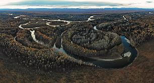 tugur river taimen