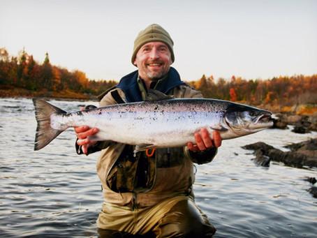 Best season of salmon fishing. Chavanga autumn