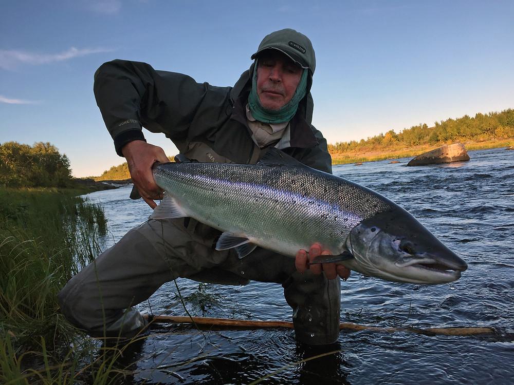 Fresh run salmon of the Chavanga river.