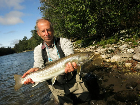 What else can you catch on the fly in Kamchatka? Whitespotted char!