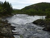 Kola river, salmon fishing tour, fly fishing