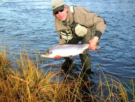 Future salmon population. Kola Peninsula salmon fishing in 2012-2015