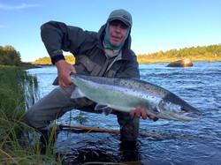 kola peninsula salmon