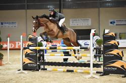 Pension chevaux haute savoie