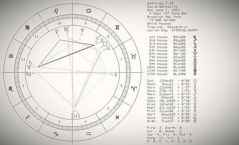 Gemini02_David%20Berkowitz_edited.jpg