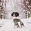 Thumbnail: Classic Winter Dog Coat   Deep Green