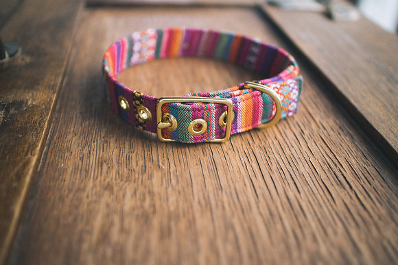 Tahiti Mix + Brass Dog Collar