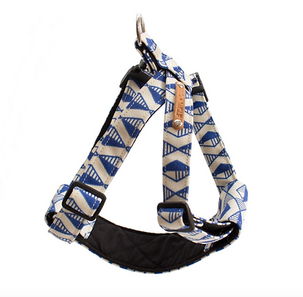 Blue Geo Harness
