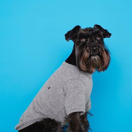 Plain T-Shirt Eva Grey