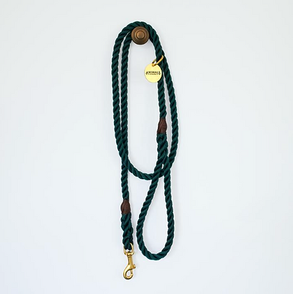 Forest Green+ Brass Rope Dog Leash