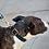 Thumbnail: Navy Leather Dog Collar
