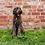 Thumbnail: Royal Navy Rope Dog Leash
