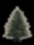 Sapin de Noël 4