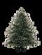 Kerstmis Pine Tree 4
