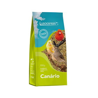 CANARIOS.jpg