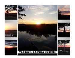 Historic Aripeka_Page_59.png