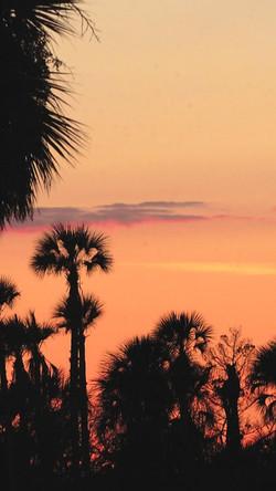 sunset knock off_024.JPG