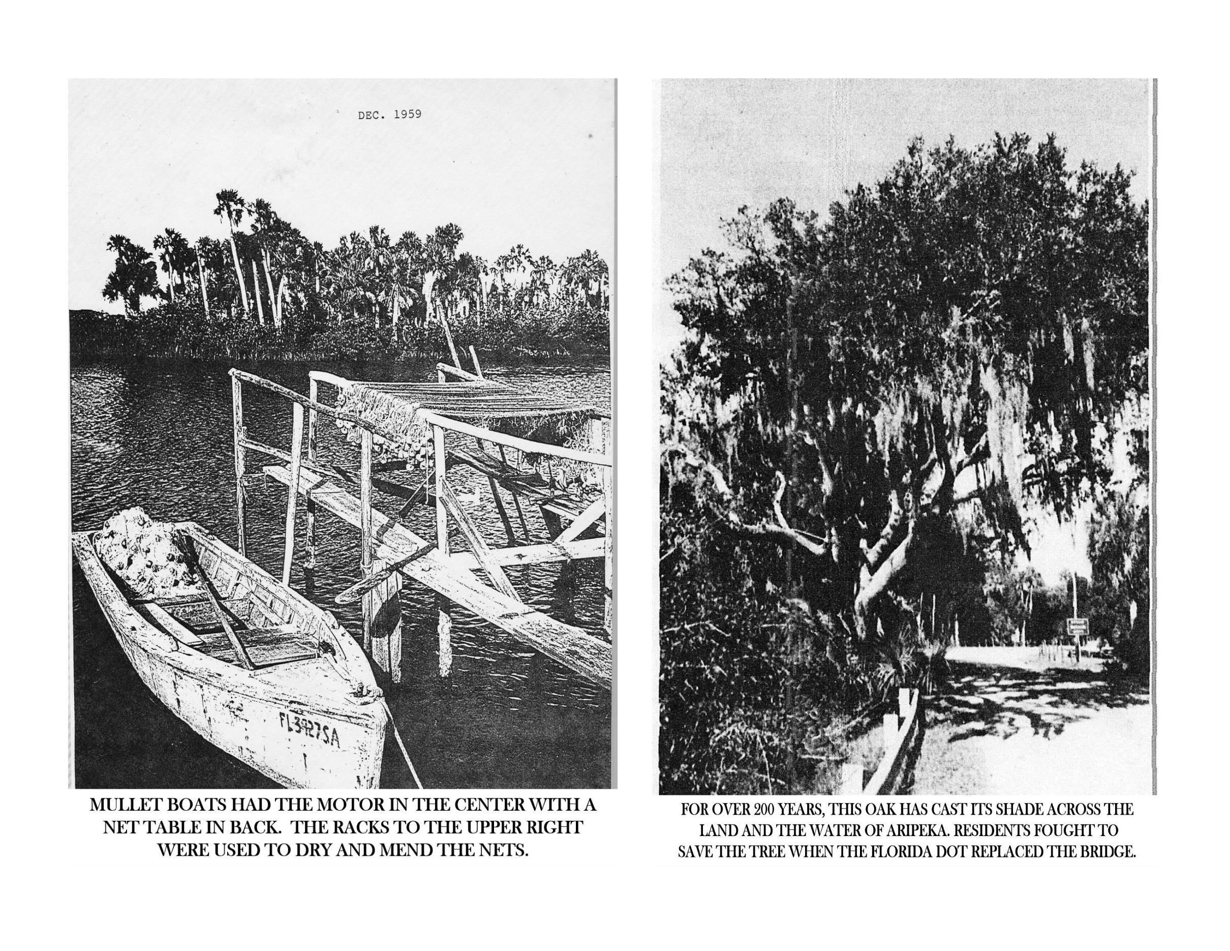 Historic Aripeka_Page_51.png