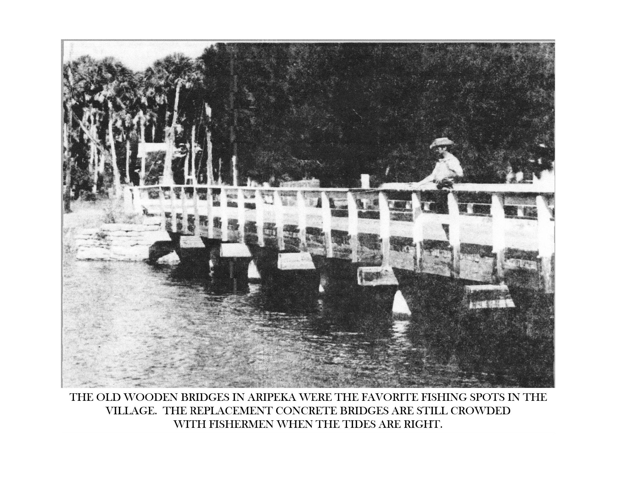 Historic Aripeka_Page_65.png