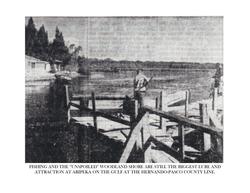Historic Aripeka_Page_56.png