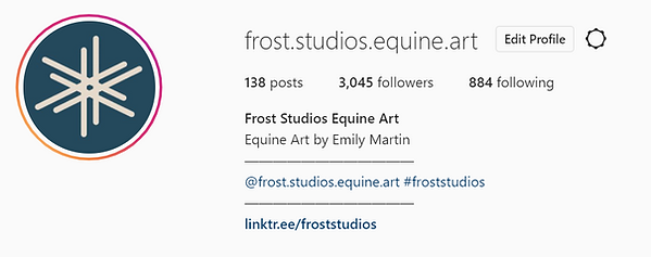 frost IG profile.PNG