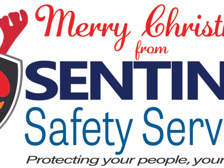 Merry Christmas and Happy New Year from Sentinel