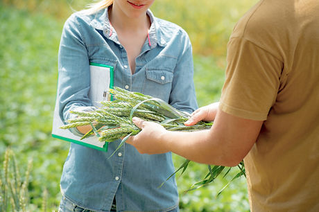 Male and female agronomist negotiating a