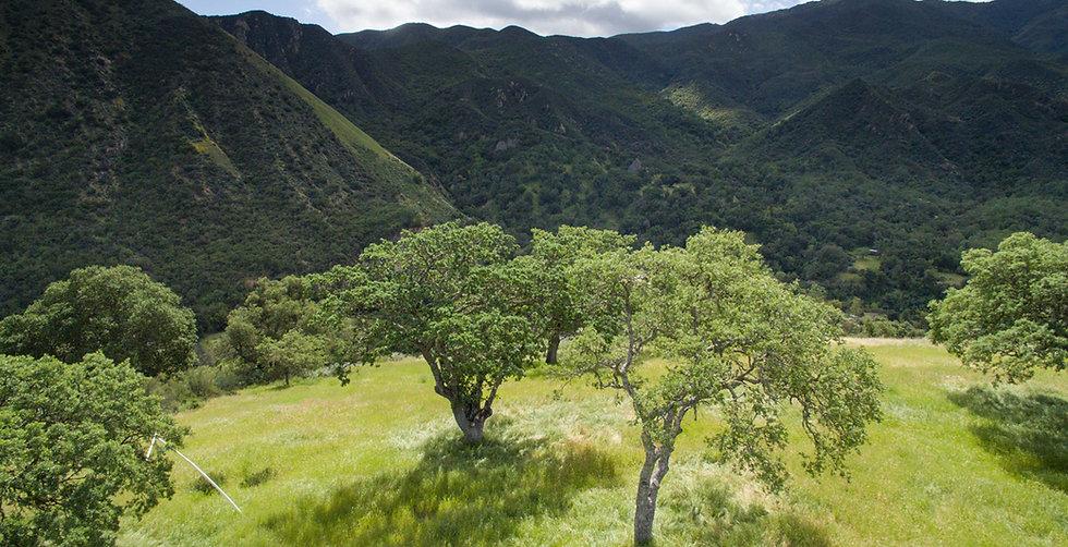 Albertola Estates, views, California Coastal Mountins, Arroyo Seco, Ventana Wilderness, acreage, land, Monterey County,
