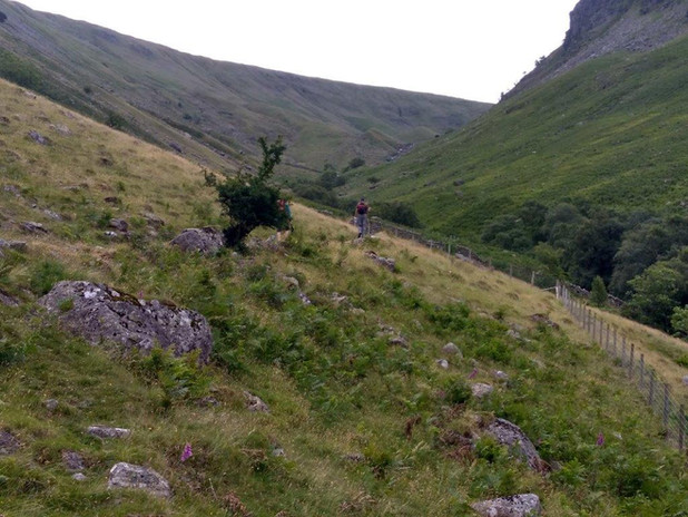 40 ascent from Borrowdale.jpg