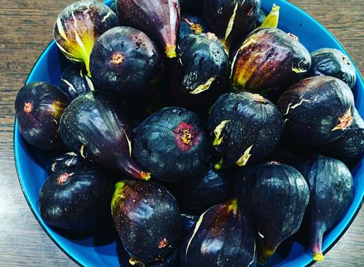 La figue noire de Caromb