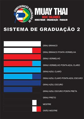 sistema graduacao 2