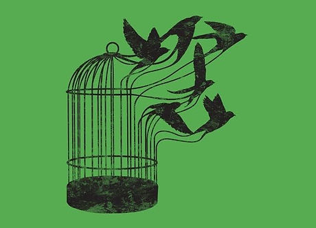 caged bird.jpg