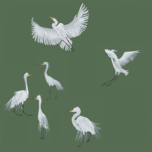 Egret Wallpaper - Forest