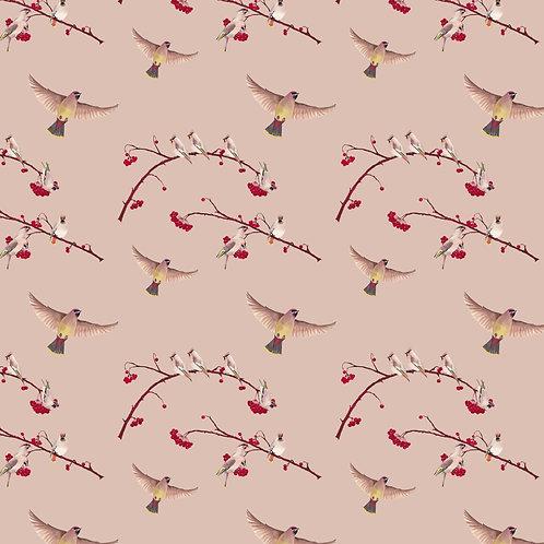Waxwings Berry Wallpaper