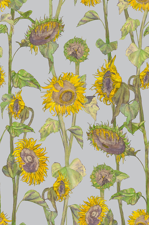 Sunflowers wallpaper-grey