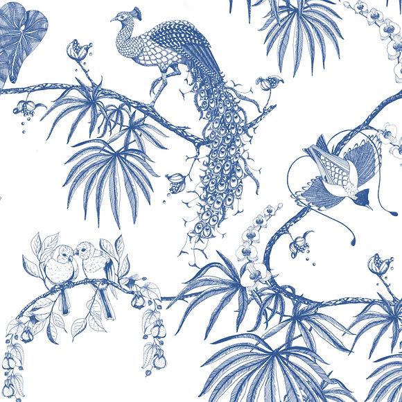 peacock website  copy.jpg