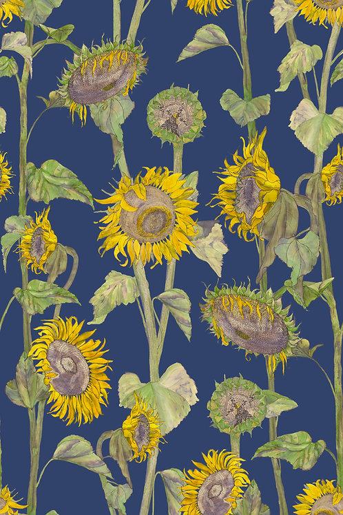 Sunflowers wallpaper-blue