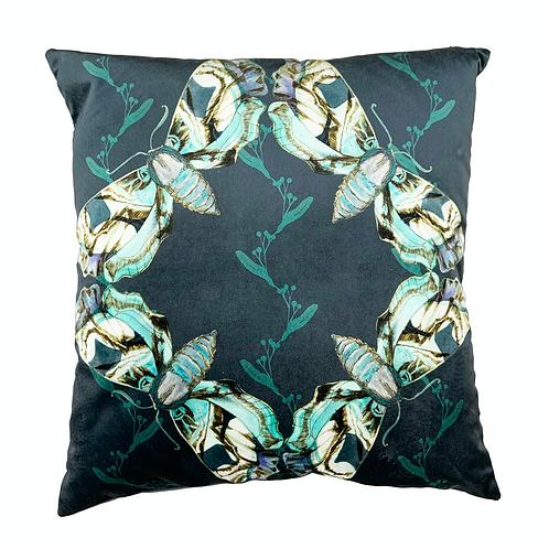 Hawkmoth cushion