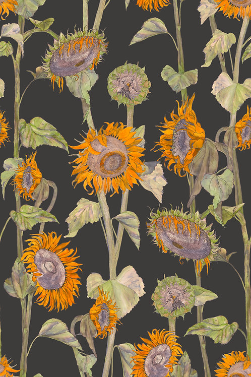 Sunflowers wallpaper- black
