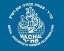 The Israeli Air Force (IAF)