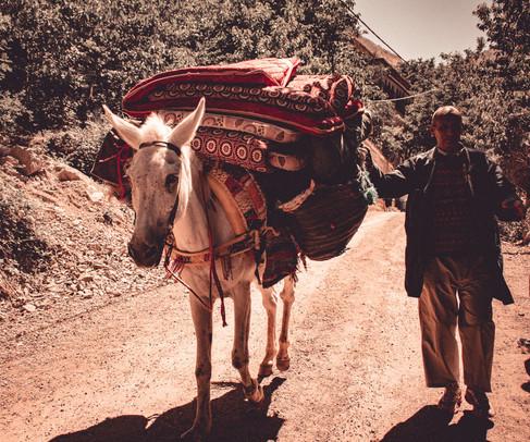 Maroko-96.jpg