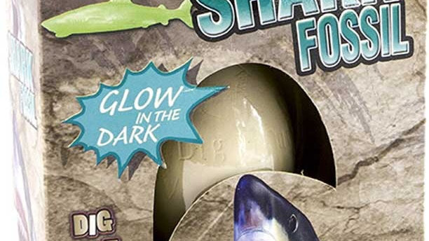 Shark - dig and discover fossil egg