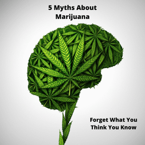 5 Myths About Marijuana: Separating Fact From Fiction