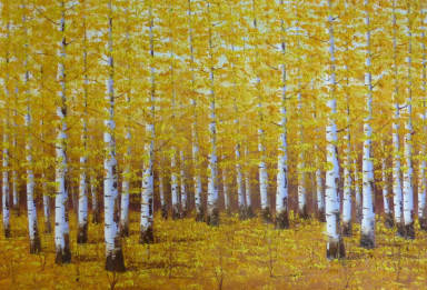 Yellow-11-1024x696-384x261.jpg