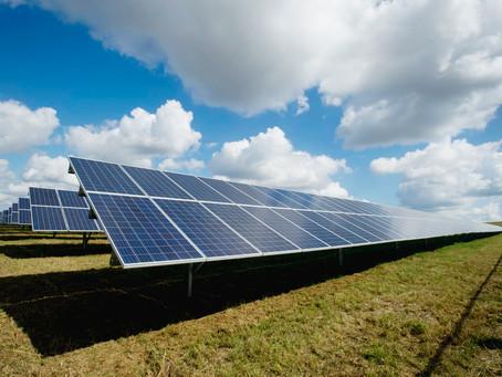 Survival Dad on Affordable Solar Panels