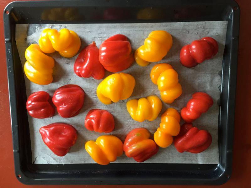 Pepper before.jpg