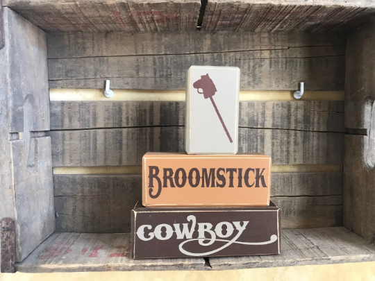 BroomstickCowboy.png