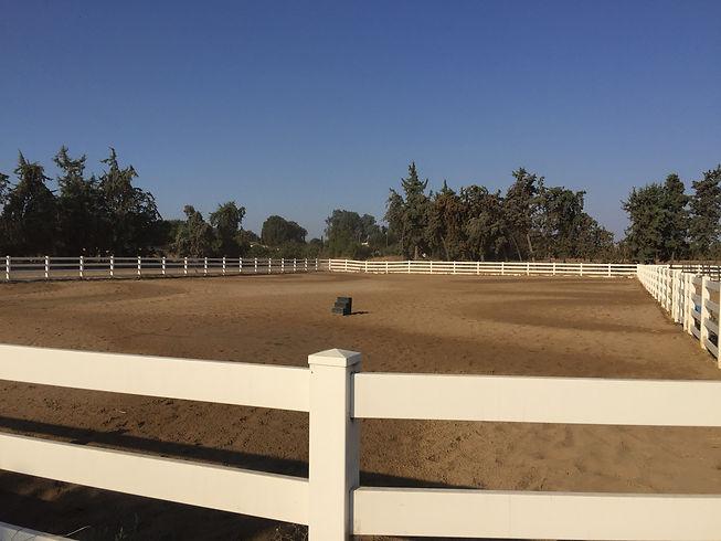Horse Boarding Brentwood 3.JPG