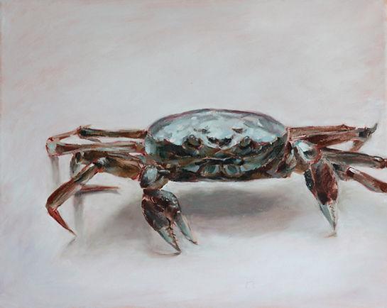 gentle crab watercolor